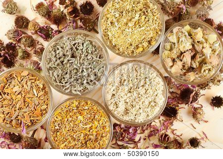 Healing Herbs In Glass Cups,top View, Herbal Medicine