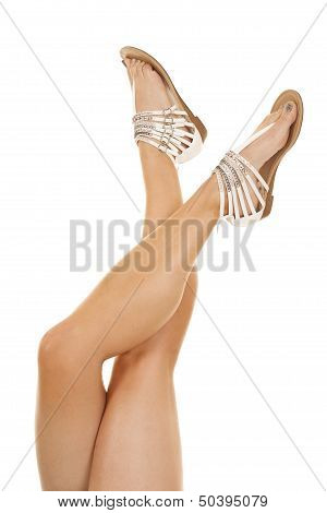 Woman Legs Up Crossed Strap Shoes