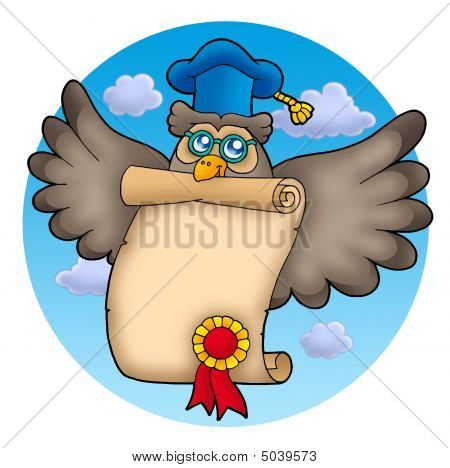 Owl Teacher With Diploma On Sky