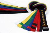 Martial Arts Belts 2