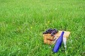 picture of nic  - Two wine glasses and a wine bottle with a pic nic basket and grapes in an open field with flowers and fresh spring grass - JPG