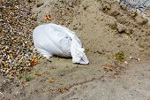 stock photo of sandbag  - White sandbag bag is full with sand and ready for action - JPG