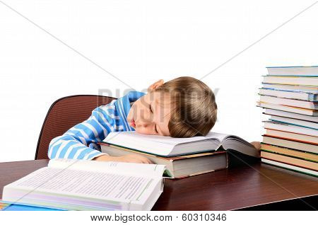 Little Boy Fell Asleep On Books