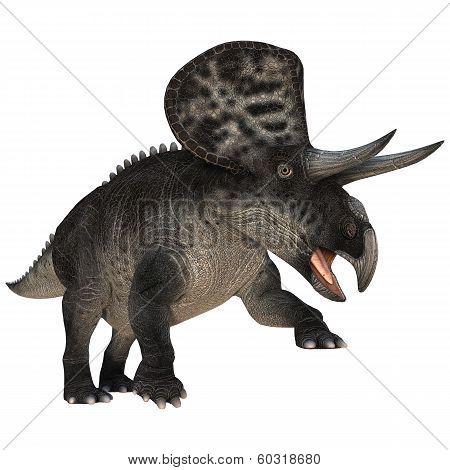 Dinosaur Zuniceratops