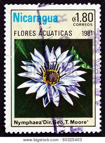 Postage Stamp Nicaragua 1981 Nymphaea Director George T. Moore