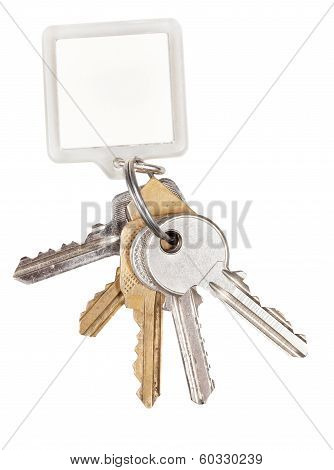 Bunch Of Door Keys On Ring And Keychain