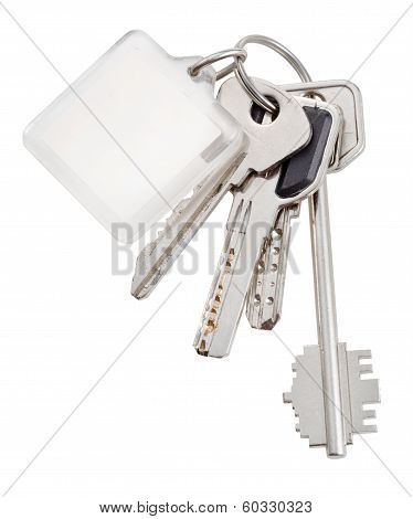 Bunch Of Home Keys On Ring And Keychain