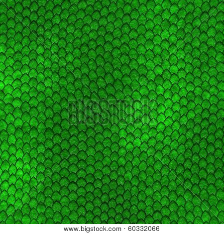 Green Dragon Scales Pattern