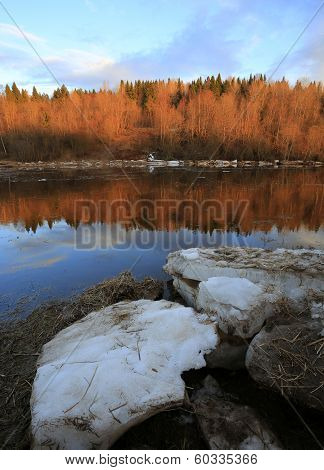 Floe On The River In The Forest