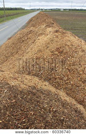 Ground Mulch
