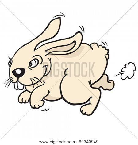 rabbit run cartoon