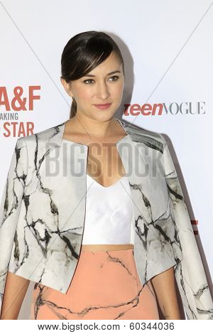 LOS ANGELES - FEB 22:  Zelda Williams at the Abercrombie & Fitch 'The Making of a Star' Spring Campaign Party  at Siren Studios on February 22, 2014 in Los Angeles, CA