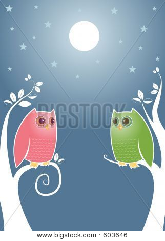 Lovebirds At Night