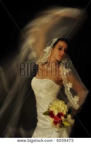 Wedding bride