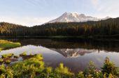 Постер, плакат: Гора Рейнир и отражение озеро на рассвете