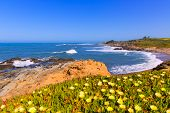 picture of hollow  - California Bean Hollow State beach in Cabrillo Highway on State Route 1 San Mateo - JPG