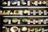 Plastic Japanese Dinner Menu