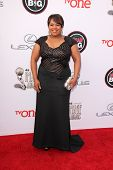 LOS ANGELES - FEB 22:  Chandra Wilson at the 45th NAACP Image Awards Arrivals at Pasadena Civic Audi