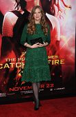 LOS ANGELES - NOV 18:  Suzanne Collins arrives to the