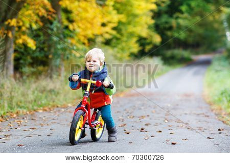 Cute Active Little Boy Driving On His Bike In Autumn Forest