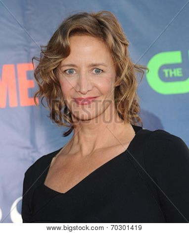 LOS ANGELES - JUL 17:  Janet McTeer arrives to the CBS-CW-Showtime Summer TCA Press Tour 2014  on July7, 2014 in West Hollywood, CA.