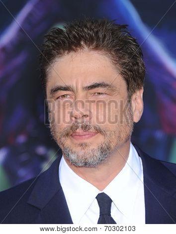 LOS ANGELES - JUL 21:  Benicio Del Toro arrives to the