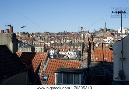 View Over Rooftops Of A Town