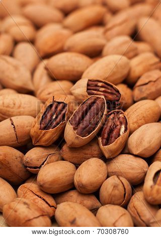 Pecan background