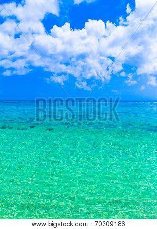 Beach Sand Paradise
