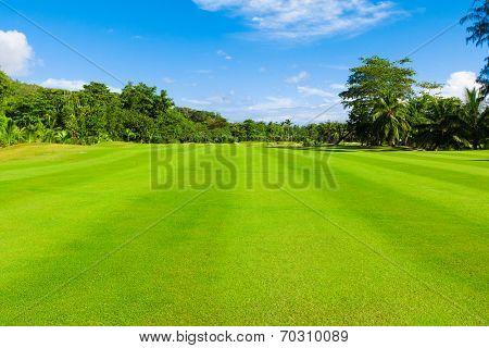 Fields Fairway Landscape
