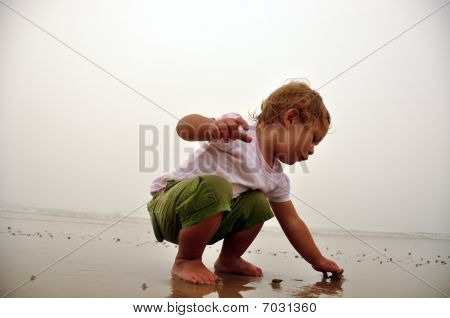 young girl picking up sea shells