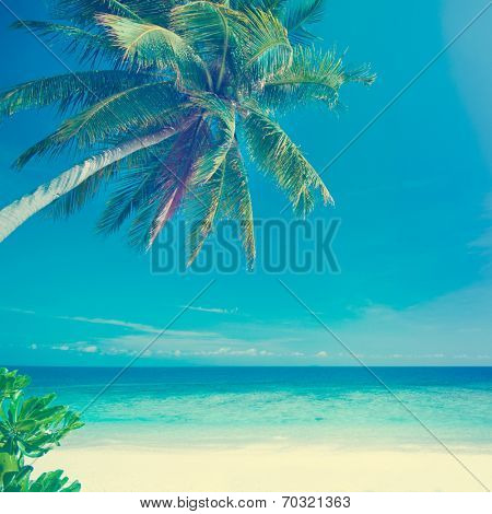 Retro vintage style summer sea view with coconut tree at Perhentian island, Malaysia