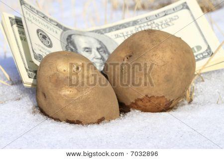 Cold Cash And Potato