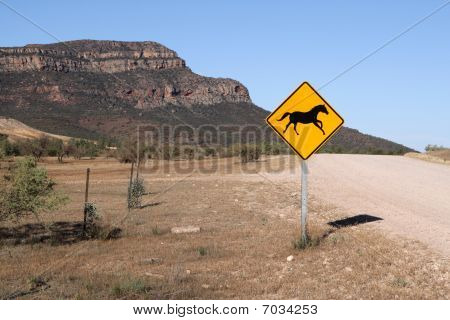 Attention - wild horses!