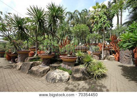 A composition of pots with tropical flowers and stones and trees and grass in the Nong Nooch tropica
