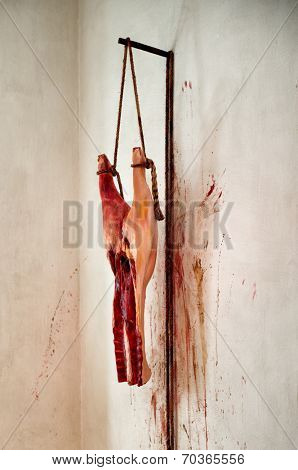 Skinned and cleaned hindquarter animal carcass hanging on a meat gibbet against a blood spattered wall in an old-fashioned butchery or restaurant display