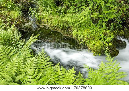 Sideways fast flowing brook