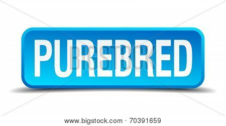 Purebred Blue 3D Realistic Square Isolated Button