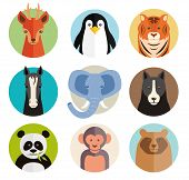 foto of terrestrial animal  - Set of vector animal icons in round buttons with the heads of a roe deer  penguin  tiger  horse  elephant  dog  panda  monkey and bear in simple kids cartoon style - JPG