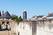 picture of duke  - view of Tour Bretagne  - JPG