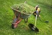foto of trimmers  - Wheelbarrow with grass and lies next to the trimmer - JPG