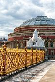 pic of kensington  - Royal Albert Hall as seen from Kensington Gardens in London - JPG