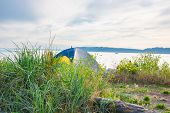 picture of driftwood  - Colorful pup tent pitched on beach with grasses - JPG