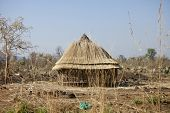 pic of sudan  - Thatch roofed hut being built in South Sudan - JPG