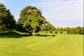 picture of bonnes  - Image of a freshly mown field in the Rheinhaue A recreational park in Bonn Germany whixh covers approximately 40 acres - JPG