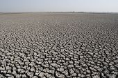 pic of quicksand  - the dry land in the little desert of Kutchh - JPG