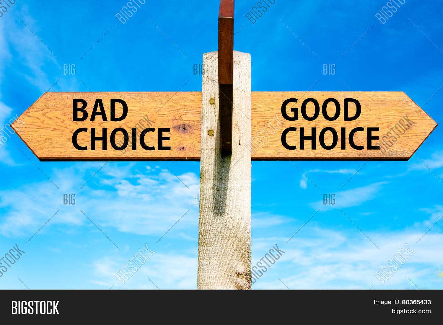 bad choices Buy bad choices: how algorithms can help you think smarter and live happier by ali almossawi (isbn: 9781473650763) from amazon's book store everyday low prices and free delivery on eligible orders.