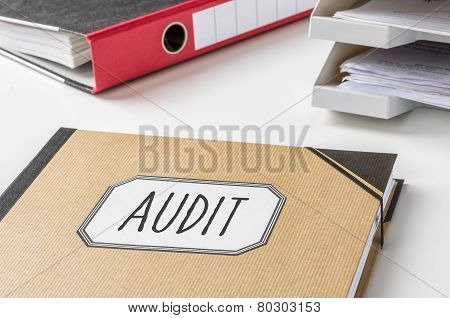 A brown folder with the label Audit