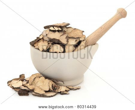 Mushroom fungus herb used in chinese herbal medicine in a stone mortar with pestle over white background. Polyporia sclerotium.
