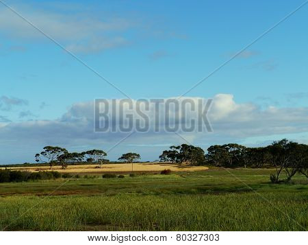 A rural landscape on Kangeroo island